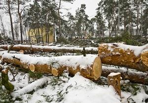 Блок Кличко просит прокуратуру расследовать законность вырубки деревьев возле метро Дарница