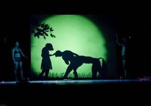 Завтра в Киеве выступит знаменитый театр теней  Пилоболус
