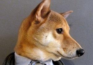 Мир моды покоряет новый fashion-блогер - пес по кличке Бодхи
