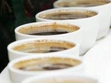Теневой Кабмин на своем первом заседании занялся распитием кофе