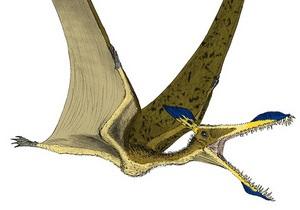 Бесполезные гребни помогали динозаврам привлекать самок