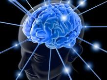 Ученые создали микроскоп для наблюдений за мозгом