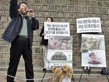 В Южной Корее могут официально разрешить есть собак