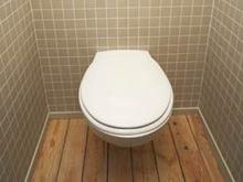 Польские туалеты соответствуют стандартам Чемпионатов Европы