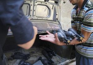 Сирия - Сирийские боевики заявили, что получили 400 тонн оружия из-за рубежа
