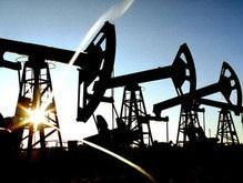 Нафтогаз может начать добычу египетской нефти в 2008 году