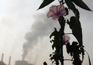 Киевская таможня обнаружила партию контрабандных химикатов стоимостью 700 тысяч гривен