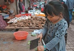 Спецпроект Корреспондента Дикая Азия: Новый Китай