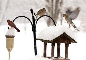 Прогноз погоды: в Украине пройдут дожди и мокрый снег