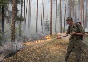 Число лесных пожаров в Украине увеличилось на 60%