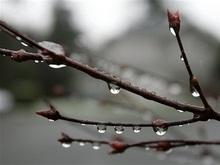 Погода на последний мартовский день