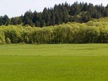 Депутаты продлили мораторий на продажу земли