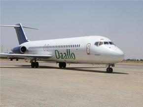 В Сомали 30 вооруженных пассажиров самолета обезвредили угонщиков