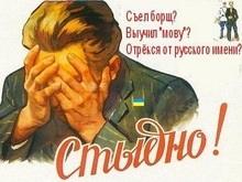 УНП: БЮТ поддержал русский язык как второй государственный