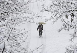 Начальник гидрометцентра рассказал, когда в Украину придет зима