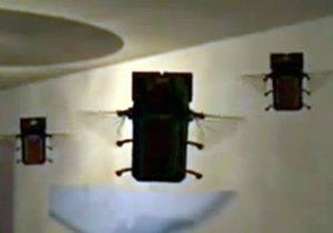 Американские ВВС разрабатывают беспилотники в виде птиц и жуков