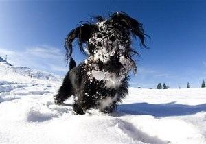 Холодные зимы последних лет могут быть связаны с  изменением ультрафиолетового излучения Солнца