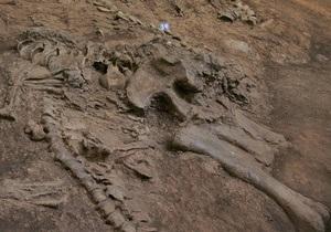 В Мексике первый раз обнаружили хвост динозавра