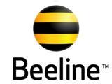 Beeline провел высокоскоростной Интернет в миллион квартир