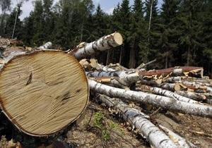 Ежесекундно на планете вырубается участок леса размером с футбольное поле