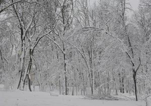 В первый день 2010 года в Киеве пойдет снег