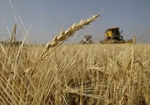 Кабмин прогнозирует рекордный урожай зерновых в Украине