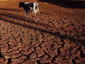 Ученые: Китай вскоре сильно пострадает от глобального потепления