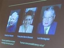 Вручена Нобелевская премия по медицине (обновлено)