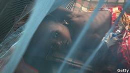 ВОЗ: количество смертей от малярии упало на 40%
