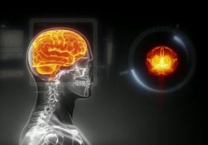 Европейцы создадут компьютерную модель мозга