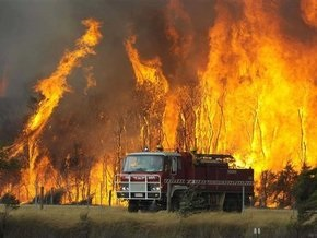 Власти Австралии назвали имя виновника крупных лесных пожаров