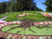 В Киеве начали готовить выставку цветов