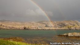 Шотландцы строят туалет за $80000 на необитаемом острове