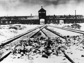 В Освенциме найдено письмо, оставленное узниками 65 лет назад