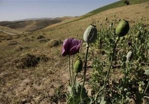 В Харьковской области воздушные рейды милиции обнаружили 34 посева наркорастений