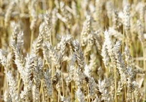Рада намерена изменить схему работы зернотрейдеров в Украине