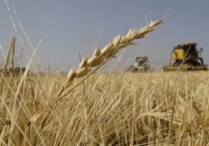 Украина не ждет дефицита зерна, несмотря на суровую зиму