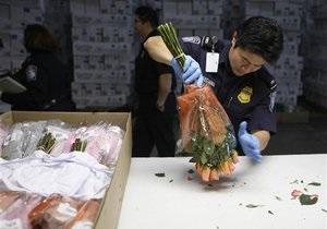 Голландские пограничники нашли в розах из Колумбии груз кокаина