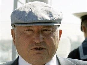 Лужков подал в суд на художника за слова  Уклюжий вор