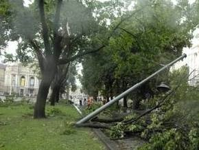 Ураган нанес Львову убытки на 7 млн грн. Город ожидает повторения стихии