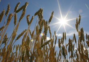 Минсельхоз США резко снизил прогноз экспорта пшеницы из Украины