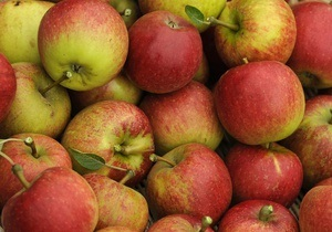 Украина увеличила экспорт яблок втрое