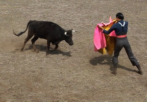 В Мехико могут ввести запрет на корриду