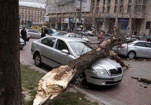 Ураганный ветер в Киеве:  рухнуло более десяти деревьев, два человека в больнице
