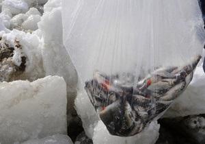 СМИ: В Киевском море из-за жары гниет погибшая рыба