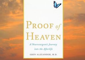 Вышедший из комы американец написал книгу о загробной жизни