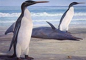 Палеонтологи нашли самого большого ископаемого пингвина