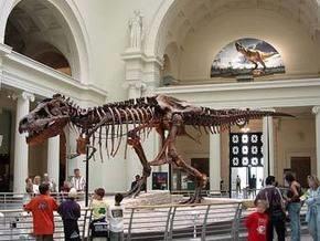 Скелет тираннозавра Самсона выставят на аукцион