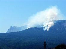 В Херсонской области горят леса