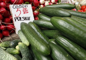 Россия запретила ввоз овощей из всех стран Евросоюза